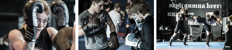kickbox; mjolnir; mma; bjj; learn_self_defence; sjalfsvorn; bardagaklubbur; vikings;