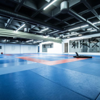 BJJ and Grappling room